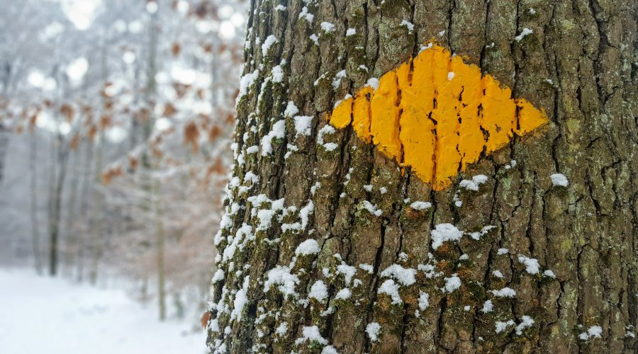 (Winter-)Wanderwegweiser