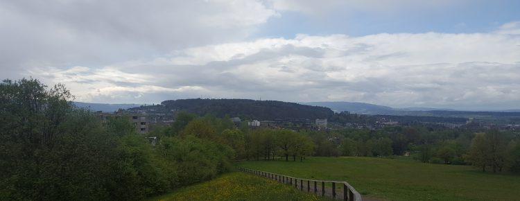 Monte Diggelmann