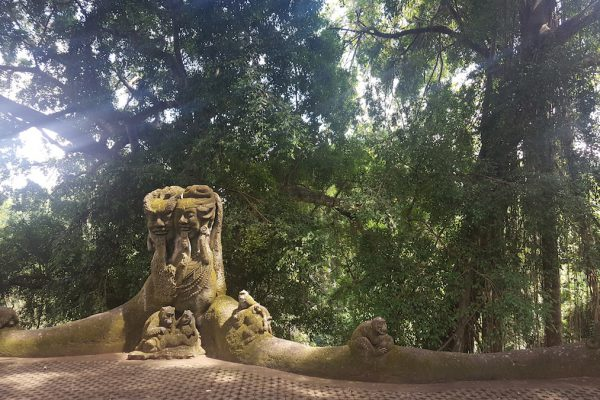 Jalan Monkey Forest